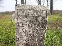 WILSON, MAHALA - Shelby County, Ohio | MAHALA WILSON - Ohio Gravestone Photos