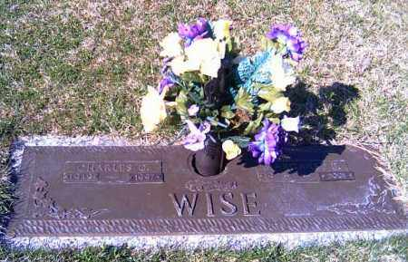 WISE, CHARLES C. - Shelby County, Ohio | CHARLES C. WISE - Ohio Gravestone Photos