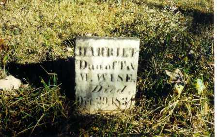 WISE, HARRIET - Shelby County, Ohio | HARRIET WISE - Ohio Gravestone Photos