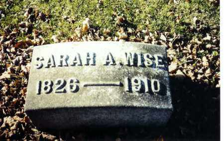 WISE, SARAH A. - Shelby County, Ohio | SARAH A. WISE - Ohio Gravestone Photos