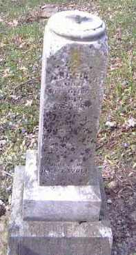 WOLF, JOSIE E. - Shelby County, Ohio | JOSIE E. WOLF - Ohio Gravestone Photos