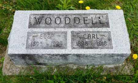 WOODDELL, ELZA - Shelby County, Ohio | ELZA WOODDELL - Ohio Gravestone Photos