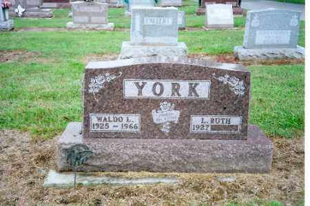 YORK, WALDO - Shelby County, Ohio | WALDO YORK - Ohio Gravestone Photos