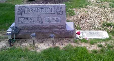 BRANDON SCOTT, DEBRA JEAN - Stark County, Ohio | DEBRA JEAN BRANDON SCOTT - Ohio Gravestone Photos