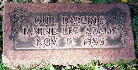 ADAMS, JANINE LEE - Stark County, Ohio | JANINE LEE ADAMS - Ohio Gravestone Photos
