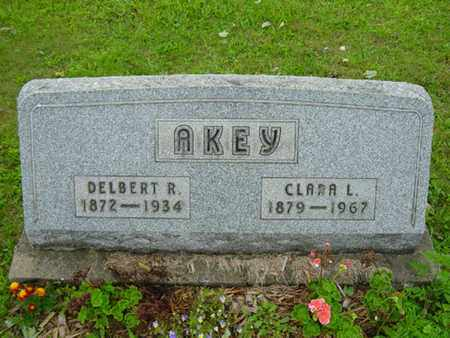 AKEY, DELBERT ROSS - Stark County, Ohio | DELBERT ROSS AKEY - Ohio Gravestone Photos