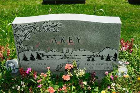 AKEY, DELBERT - Stark County, Ohio | DELBERT AKEY - Ohio Gravestone Photos