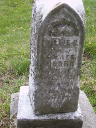 ??AR?, ?LLIE S. [POSSIBLY OLLIE S.] - Stark County, Ohio | ?LLIE S. [POSSIBLY OLLIE S.] ??AR? - Ohio Gravestone Photos