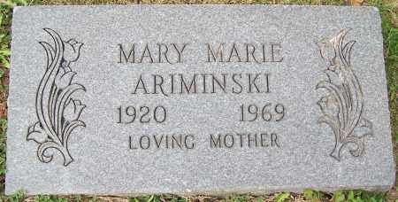 ARIMINSKI, MARY MARIE - Stark County, Ohio | MARY MARIE ARIMINSKI - Ohio Gravestone Photos