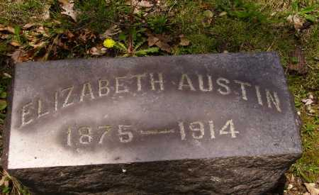AUSTIN, ELIZABETH - Stark County, Ohio | ELIZABETH AUSTIN - Ohio Gravestone Photos