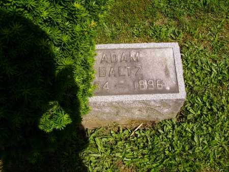 BALTZ, ADAM - Stark County, Ohio | ADAM BALTZ - Ohio Gravestone Photos