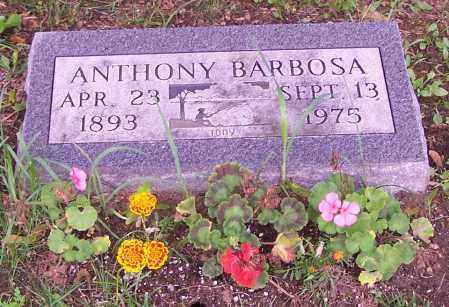 BARBOSA, ANTHONY - Stark County, Ohio | ANTHONY BARBOSA - Ohio Gravestone Photos