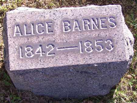 BARNES, ALICE - Stark County, Ohio | ALICE BARNES - Ohio Gravestone Photos