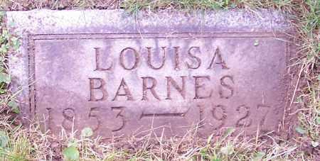 BARNES, LOUISA - Stark County, Ohio | LOUISA BARNES - Ohio Gravestone Photos