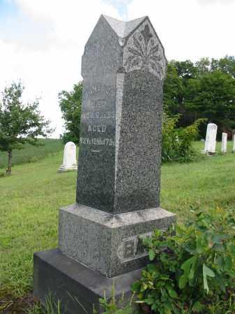 BAUM, JOHN - Stark County, Ohio | JOHN BAUM - Ohio Gravestone Photos