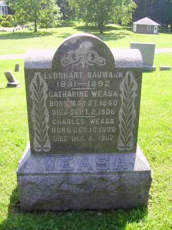 WEASA, CATHERINE - Stark County, Ohio | CATHERINE WEASA - Ohio Gravestone Photos