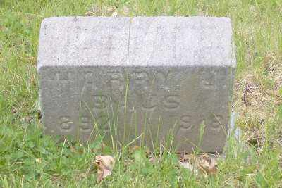 BAUS, HARRY J. - Stark County, Ohio | HARRY J. BAUS - Ohio Gravestone Photos