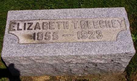 MCGEE BEECHEY, ELIZABETH T. - Stark County, Ohio | ELIZABETH T. MCGEE BEECHEY - Ohio Gravestone Photos