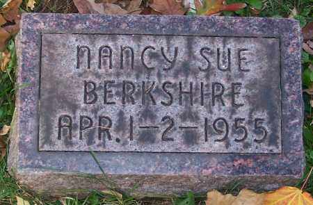 BERKSHIRE, NANCY SUE - Stark County, Ohio | NANCY SUE BERKSHIRE - Ohio Gravestone Photos