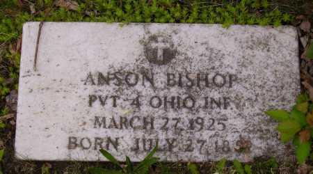 BISHOP, ANSON - Stark County, Ohio   ANSON BISHOP - Ohio Gravestone Photos
