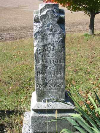BIXLER, DAISY M - Stark County, Ohio | DAISY M BIXLER - Ohio Gravestone Photos