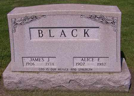 BLACK, ALICE E. - Stark County, Ohio | ALICE E. BLACK - Ohio Gravestone Photos