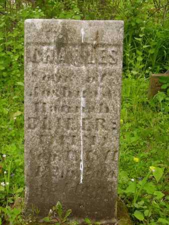 BLILER, CHARLES - Stark County, Ohio | CHARLES BLILER - Ohio Gravestone Photos