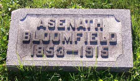 BLOOMFIELD, ASENATH - Stark County, Ohio | ASENATH BLOOMFIELD - Ohio Gravestone Photos