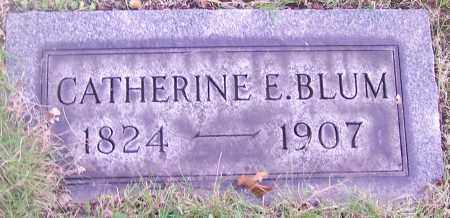 BLUM, CATHERINE E. - Stark County, Ohio | CATHERINE E. BLUM - Ohio Gravestone Photos
