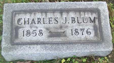 BLUM, CHARLES J. - Stark County, Ohio | CHARLES J. BLUM - Ohio Gravestone Photos