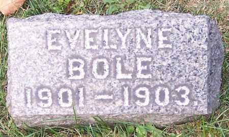 BOLE, EVELYNE - Stark County, Ohio | EVELYNE BOLE - Ohio Gravestone Photos