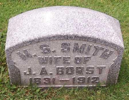 SMITH BORST, M.S. - Stark County, Ohio | M.S. SMITH BORST - Ohio Gravestone Photos