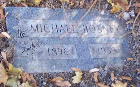 BOSNEY, MICHAEL - Stark County, Ohio | MICHAEL BOSNEY - Ohio Gravestone Photos
