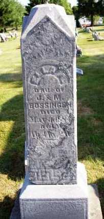 BOSSINGER, ELLA - Stark County, Ohio | ELLA BOSSINGER - Ohio Gravestone Photos