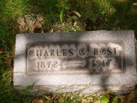 BOST, CHARLES G. - Stark County, Ohio | CHARLES G. BOST - Ohio Gravestone Photos