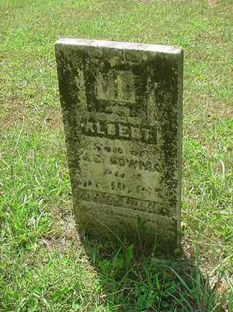 BOWMAN, ALBERT - Stark County, Ohio | ALBERT BOWMAN - Ohio Gravestone Photos