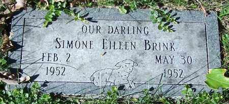 BRINK, SIMONE EILEEN - Stark County, Ohio | SIMONE EILEEN BRINK - Ohio Gravestone Photos