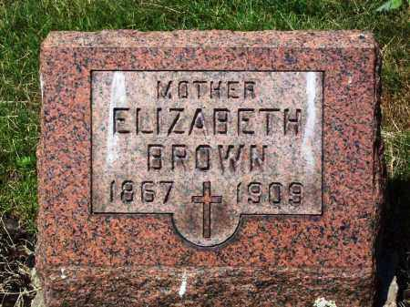 BROWN, ELIZABETH - Stark County, Ohio | ELIZABETH BROWN - Ohio Gravestone Photos