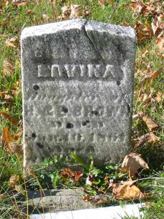 BROWN, LAVINA - Stark County, Ohio | LAVINA BROWN - Ohio Gravestone Photos