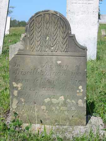 BRYAN, PRISCILLIA - Stark County, Ohio | PRISCILLIA BRYAN - Ohio Gravestone Photos