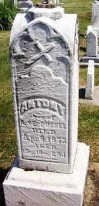 BUCKEL, ANTONY - Stark County, Ohio | ANTONY BUCKEL - Ohio Gravestone Photos