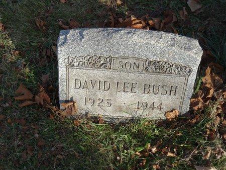 BUSH, DAVID LEE - Stark County, Ohio | DAVID LEE BUSH - Ohio Gravestone Photos