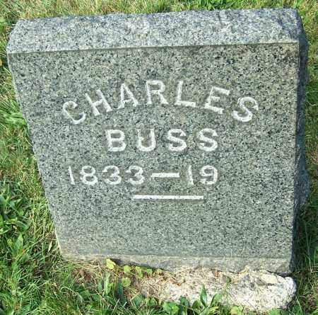 BUSS, CHARLES - Stark County, Ohio | CHARLES BUSS - Ohio Gravestone Photos