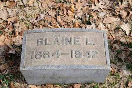 CAMERON, BLAINE LOGAN - Stark County, Ohio | BLAINE LOGAN CAMERON - Ohio Gravestone Photos