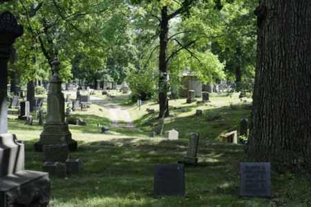 CEMETERY, MASSILLON CITY - OVER VIEW - Stark County, Ohio   MASSILLON CITY - OVER VIEW CEMETERY - Ohio Gravestone Photos