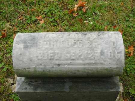 CLAYTON, ROY S - Stark County, Ohio | ROY S CLAYTON - Ohio Gravestone Photos