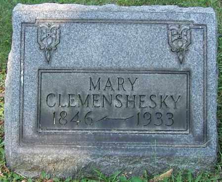 CLEMENSHESKY, MARY - Stark County, Ohio | MARY CLEMENSHESKY - Ohio Gravestone Photos