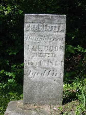 COOK, CHARLOTTA - Stark County, Ohio | CHARLOTTA COOK - Ohio Gravestone Photos