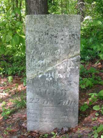 COOK, ELIZABETH - Stark County, Ohio   ELIZABETH COOK - Ohio Gravestone Photos