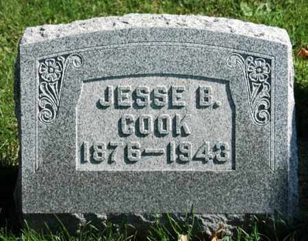 COOK, JESSE BRANDT - Stark County, Ohio | JESSE BRANDT COOK - Ohio Gravestone Photos